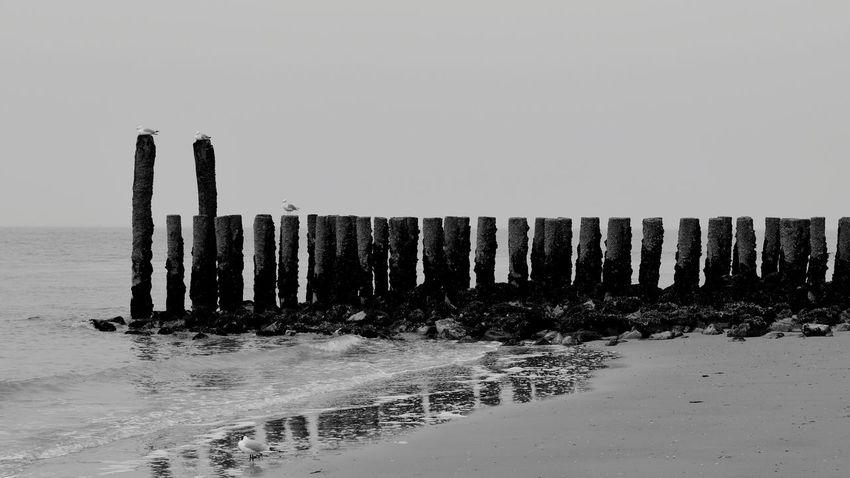 Water Sea Beach Wooden Post Sand Groyne Sky Horizon Over Water
