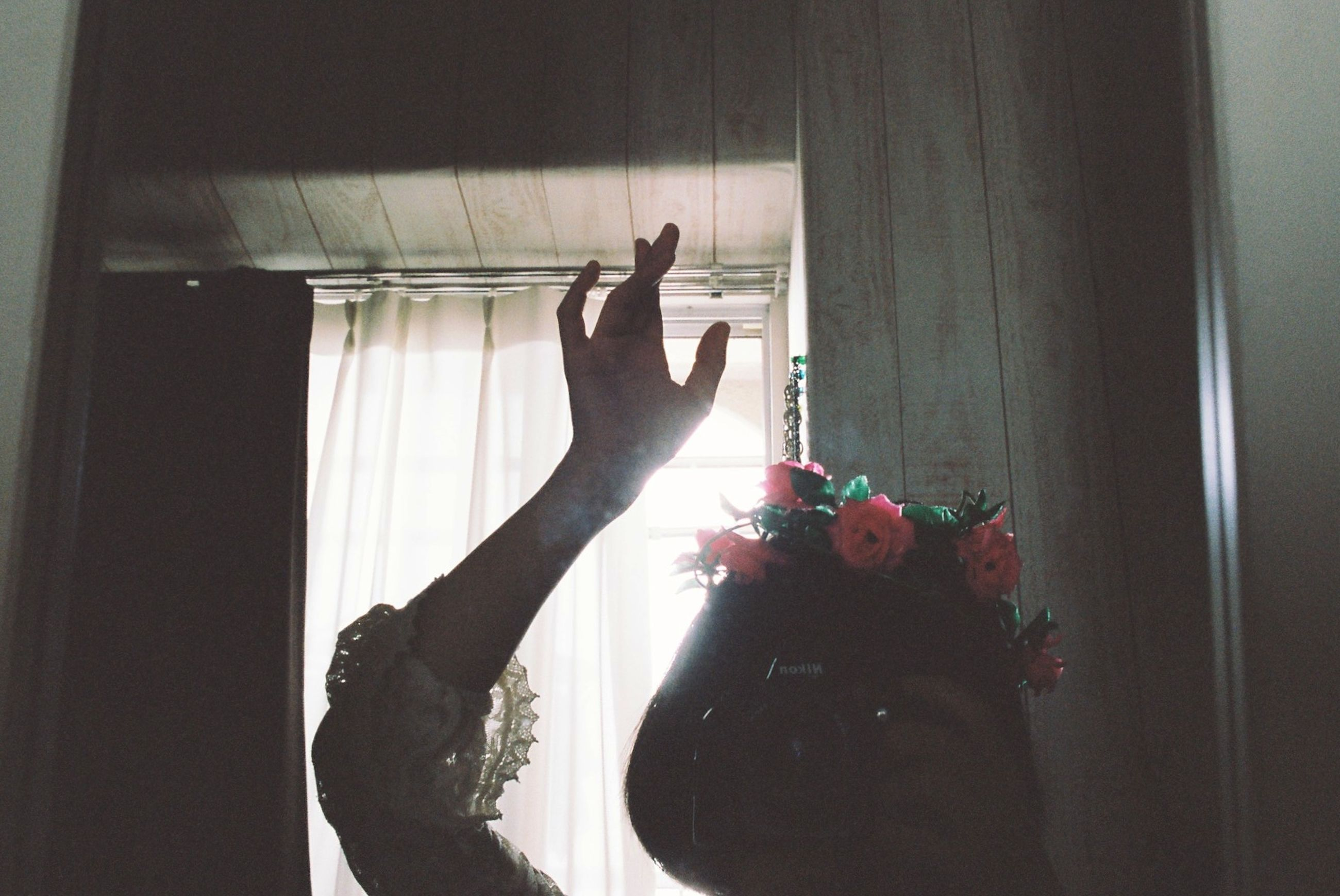 indoors, person, flower, holding, home interior, lifestyles, window, human finger, leisure activity, part of, cropped, freshness, unrecognizable person, sitting, fragility, sunlight