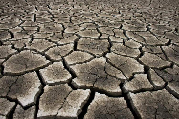 Dry cracked earth background, clay desert texture Dry Drought Earth Desert Barren Background Texture Clay Environment Arid Nature Pattern Ground Climate Dirt Soil Surface Broken Land Mud Terrain Global Hot Split Disaster Erosion Natural Closeup Sand Dirty Cracked Arid Climate Full Frame Backgrounds Scenics - Nature Textured  No People Natural Pattern Field Extreme Terrain Outdoors