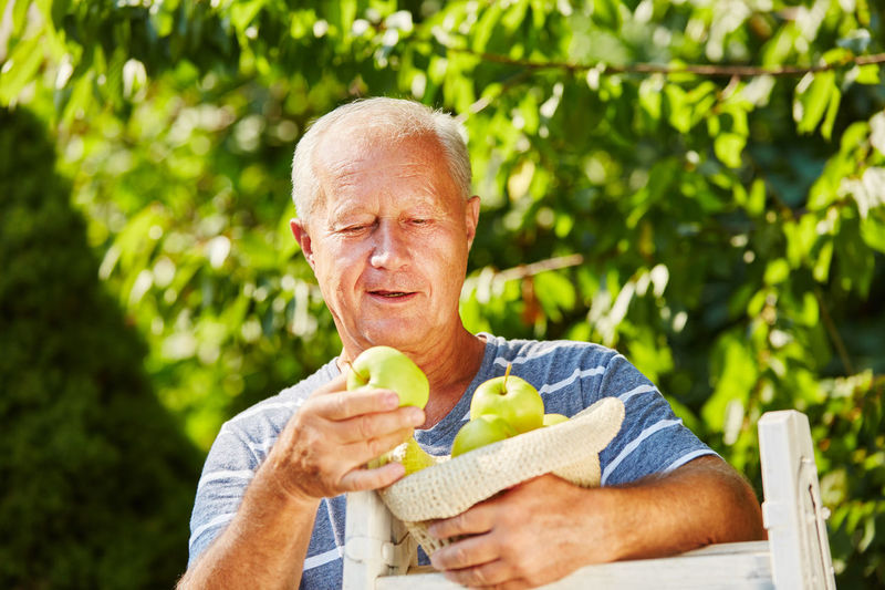 Smiling senior man holding apples