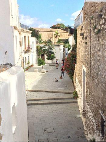 イビサ島 Ibiza island イビサ島 Ibiza SPAIN Vew Travel Travel Photography スペイン 写真 景色 旅 旅行 ヨーロッパ Europe
