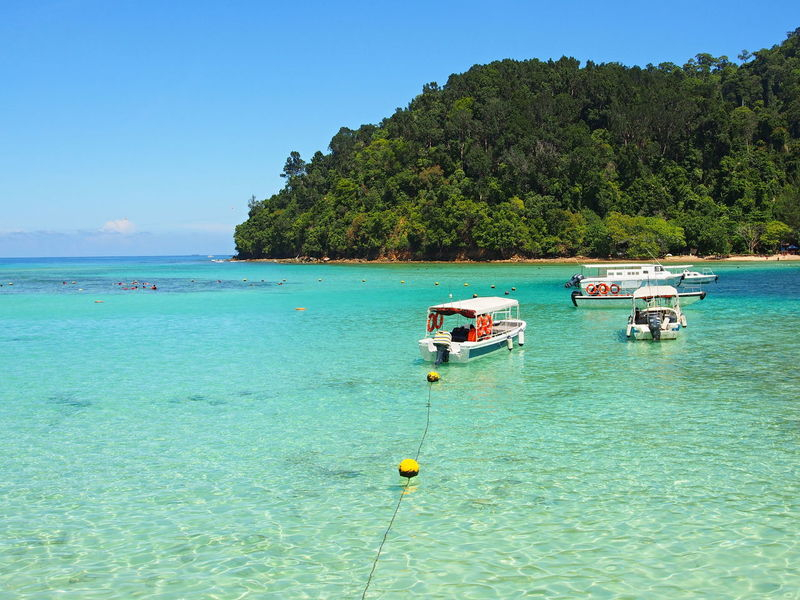 Beach Boat Trip Borneo Borneo Island Clear Sky Holiday Kota Kinabalu Kotakinabalu Longtail Boat Malaysia Malaysian Landscape Nature Sabah Sabah Borneo Sapi Island Sea Sea And Sky Sea Life Summer Summer Views Summertime Transportation Travelling Vacations Water