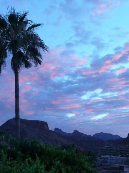 Sunset Mexico San Carlos Sonora San Carlos Palm Trees Clouds And Sky Hillside