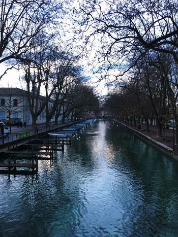 Annecy France. Was such a pleasure walking around this beautiful city. It had soo much to offer, so much beauty Tree Water Nature Sky Outdoors Canal Bare Tree Beauty In Nature Day Branch No People Boat