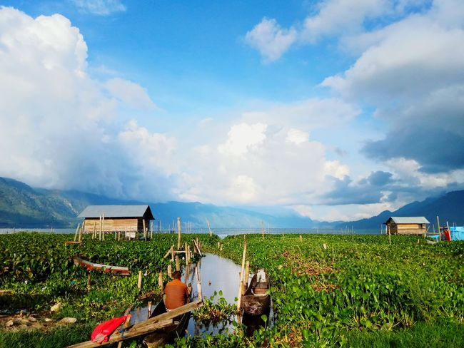 Menunggu Cloud - Sky Agriculture Landscape Outdoors