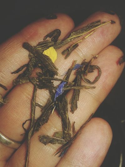 Tea Greentea Yasmin