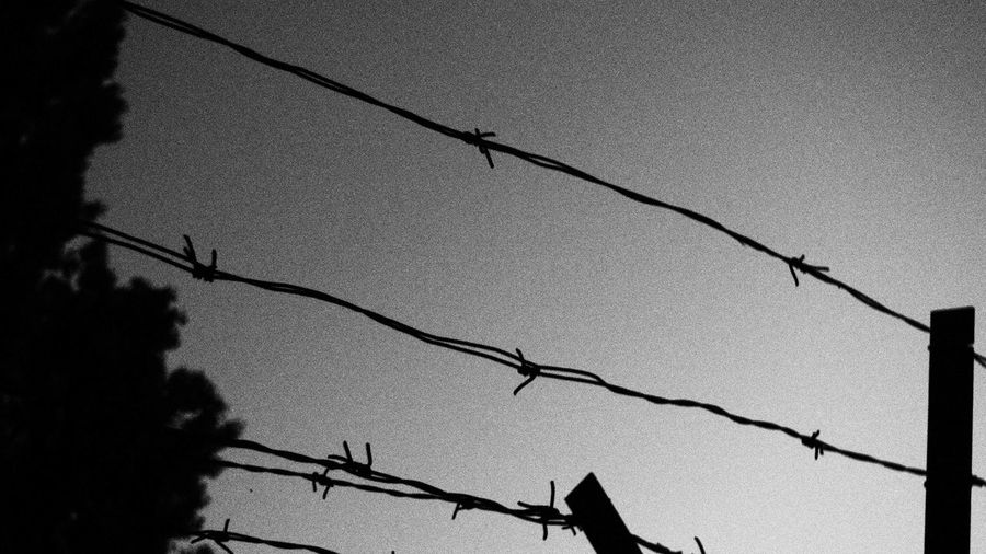 Barbed Wire Black & White Black And White Blackandwhite Blackandwhite Photography Close-up Low Angle View Outdoors Sky Wire