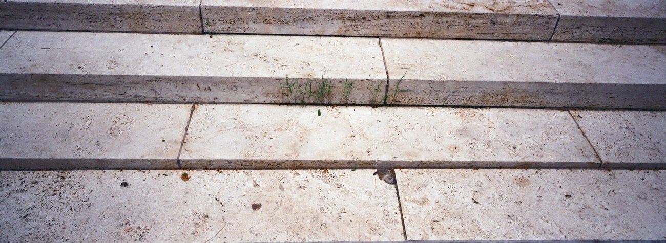 Hasselblad XPan New York Ballet Building Exterior Steps Marble Outdoors Koduckgirl