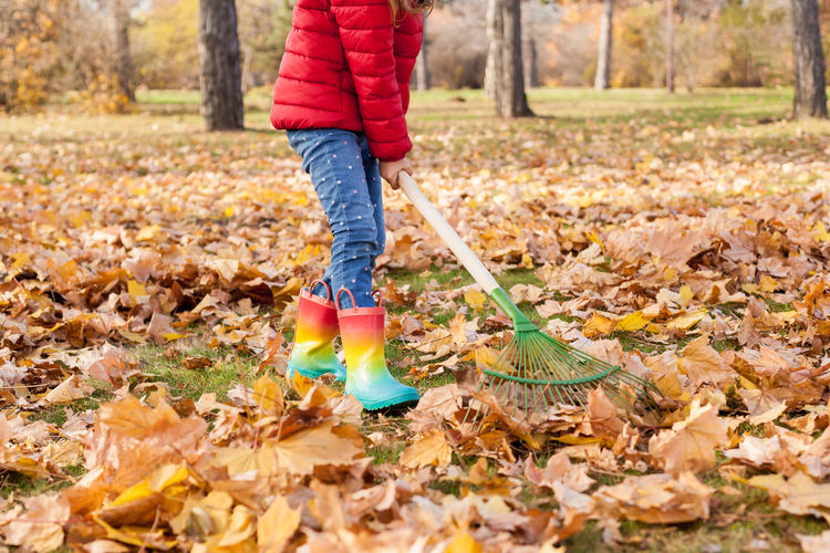 Low section of kid standing with broom by trees during autumn