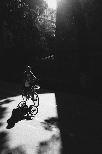 Sunlight Shadow Real People Nature One Person Transportation High Angle View Lifestyles Bicycle Day Outdoors Men Water Land Vehicle Street City Mode Of Transportation Riding Black & White Blackandwhite Streetphotography