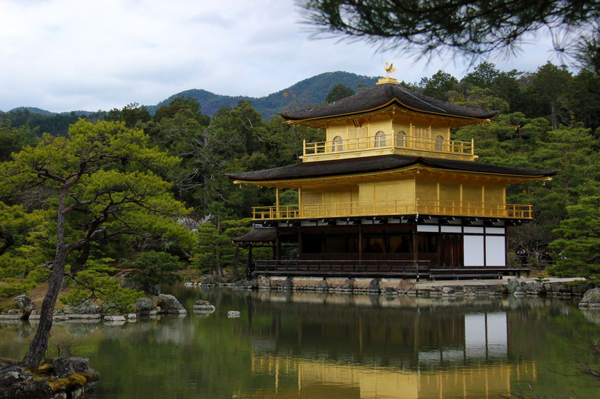 Golden Japan Japan Photography Japanese Garden Kinkaku-ji Reflection Architecture Beauty In Nature Buddhism Buddhist Temple Building Exterior Built Structure Kyoto Place Of Worship Temple Traditional Building Zen