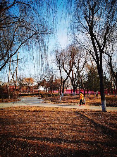 People in park against sky