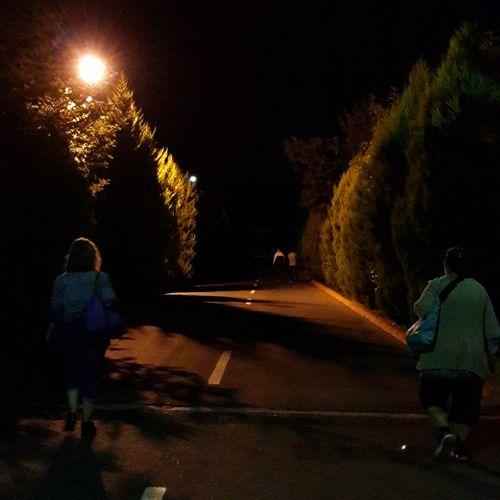 Walking Night Walk Sidewalk