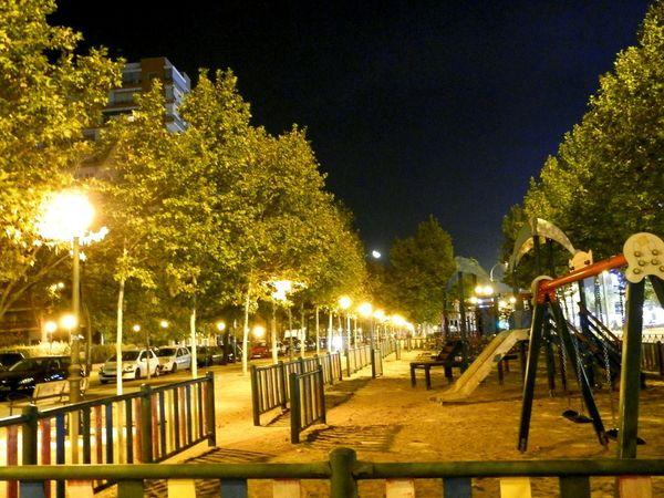 Last night at the park Night Illuminated Tree Outdoors Street Light No People Sky Park Moon