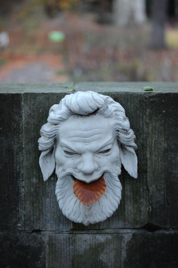 Autumn Close-up Day Focus On Foreground Leave No People Sansoucci Sculpture Selective Focus Tongue Tongue Out