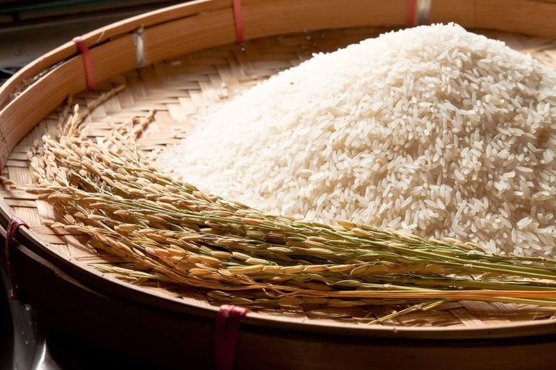 Rice Food And Drink Food No People Freshness Indoors  Close-up Healthy Eating Ready-to-eat Day raw Materials agriculture