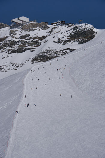 skiers on the