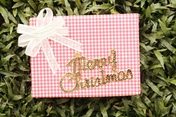 Pink Gift box on green lawn and gold text of Merry Christmas,Festival gift concept and Christmas or New Year's Day. Food Food And Drink Leaf Plant Plant Part Directly Above Freshness No People Nature Green Color High Angle View Day Wellbeing Close-up Red Growth Checked Pattern Outdoors Healthy Eating Herb Pink Gift Box Gift Boxes Gift Box Gift Box On The Lawn Green Lawns