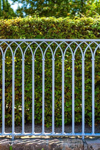View of metal gate in park