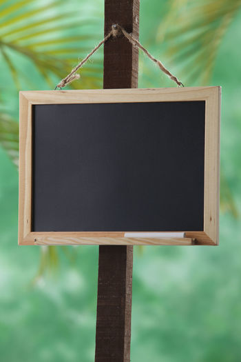 Blackboard  Education Chalk Classroom Backgrounds Billboard Blank Textured  Advice Writing Empty Organisation Communication Data Message To Do List Reminder Copy Space Focus On Foreground No People Close-up Day Wood - Material Hanging Outdoors Brown Pole Rope Shape Plant Green Color
