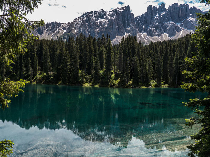 Scenic view of karersee lake by pine trees with rocky mountains in background