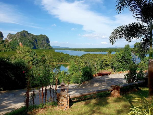 How about that? Wonderful Hat Yao Pier landscape, hardly touched by tourismn so far, in South thailand , Trang Area, captured from heaven hill resort. .... Travel Tourism Tourist Destination Blue Sky And Clouds Mangrove Mangrove Forest Rock Formation Rock Landscape Tree Water Shadow Sky Cloud - Sky Growing Scenics Tranquil Scene Tranquility Idyllic Non-urban Scene Calm Remote Countryside