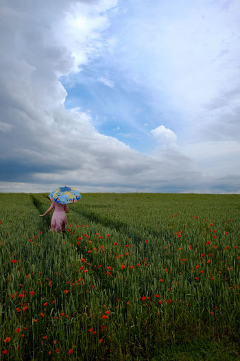 Rear view of woman with umbrella amidst poppies on landscape against sky