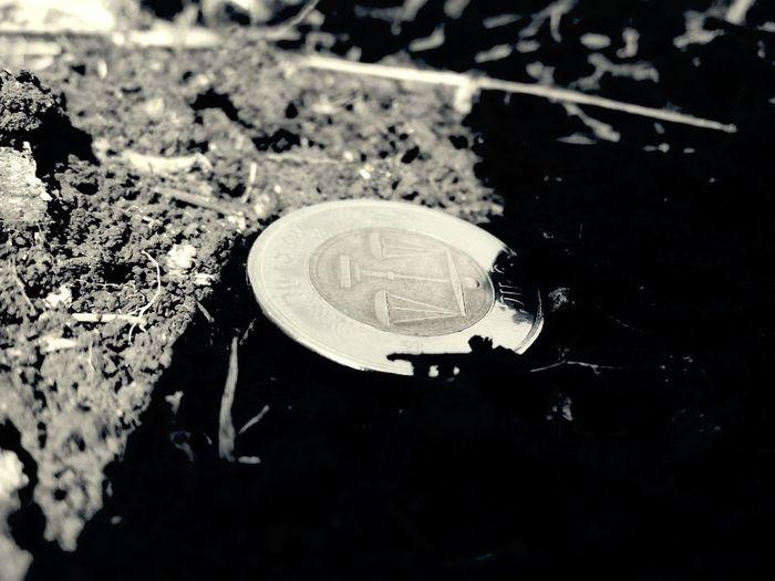The Fallen Coin