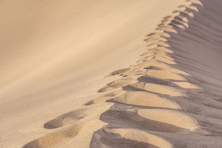 Close-up of sand dunes at beach