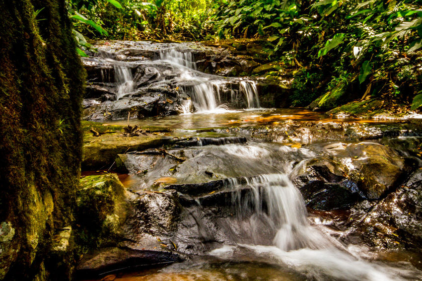 Ecoturismo Meleiro, Brazil Beauty In Nature Day Ecoturism Forest Freshness Long Exposure Moss Motion Nature No People Outdoors Rapid River Rock - Object Scenics Tranquil Scene Travel Destinations Vacations Water Waterfall