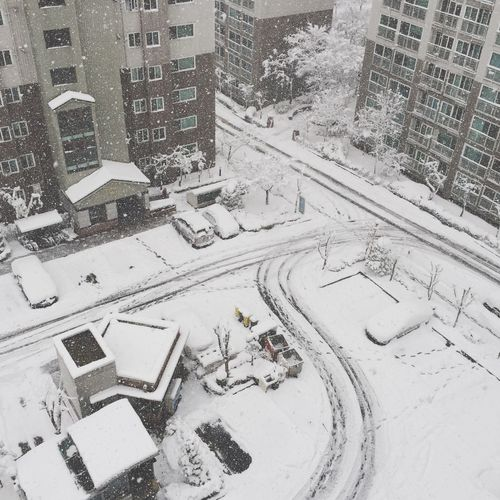 Winter Snow ❄ First Eyeem Photo