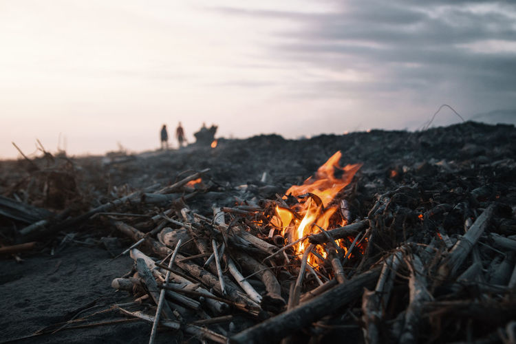 I don't still have no idea why exactly.. but for some reason people were burning all the drift wood along the beach at this place. It created a very special atmosphere. Felt like being in a Terminator movie set. Burning Nature Fire - Natural Phenomenon Flame Heat - Temperature Fire Bonfire Sky Wood - Material Campfire Outdoors Wood Log Environment Silhouette Focus On Foreground Close-up Macro Terminator Moody South America Sunset Glowing Ashes Orange Color
