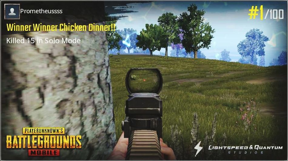 Fps PUBG Gaming Tree Sky Information Sign Arrow Sign Directional Sign Arrow Symbol One Way Traffic Arrow Sign Exit Sign Information Western Script Street Name Sign