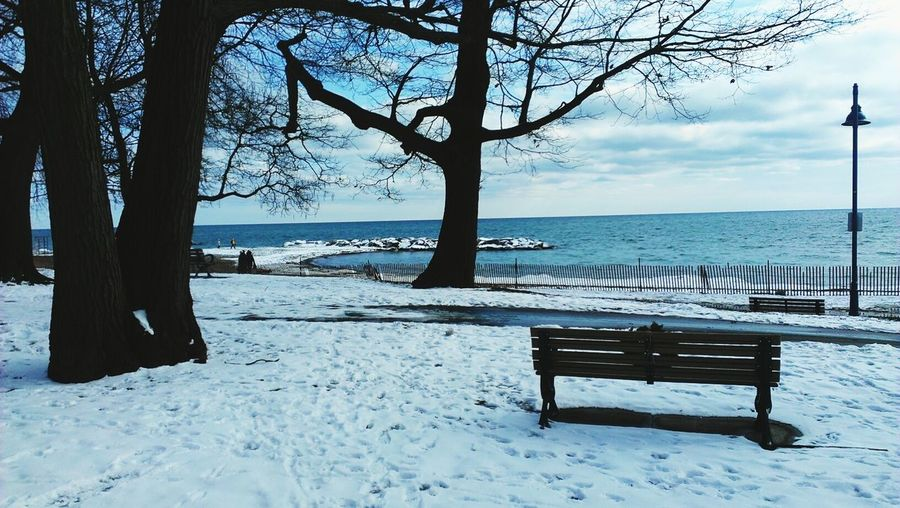 Last Year In Toronto Winter At The Beaches