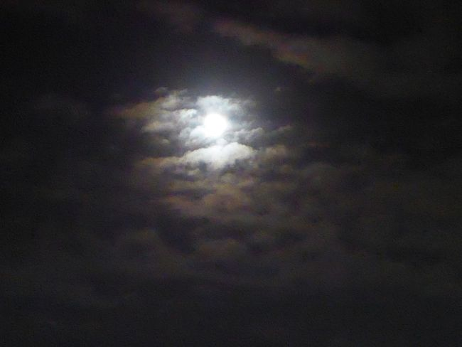 Tranquility For My Friends 😍😘🎁 Tranquil Scene Dramatic Nightsky Beauty In Nature Natural Phenomenon Brrrrrrrrr❄❄❄❄ Frosty ⛄ Cloudy Night Sky Moonlover cloudporn #skyporn beautiful bestskysever
