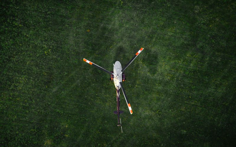 High angle view of toy on land in forest