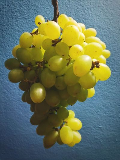 Close-up of yellow grapes hanging on wall