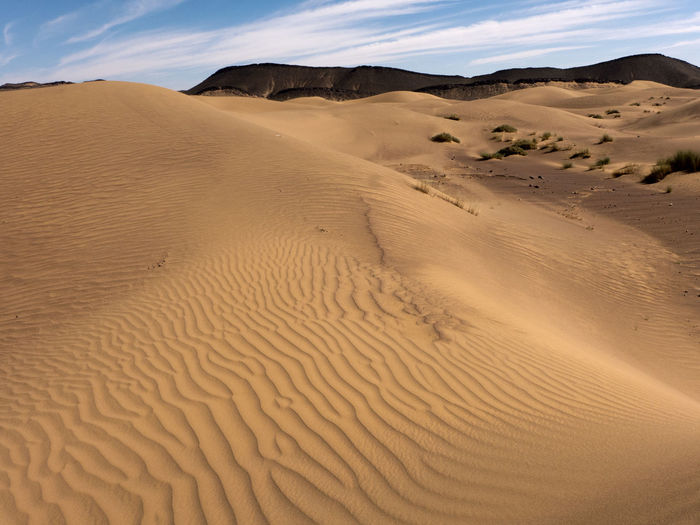 Hike through the Sahara desert in the south of Morocco Morocco Sahara Hiking Desert Sand Dune Sand Climate Landscape Land Arid Climate Environment Scenics - Nature Tranquility No People Beauty In Nature Africa Hot Dry Heat Extreme Terrain Semi-arid Pattern Tranquil Scene Natural Pattern Atmospheric