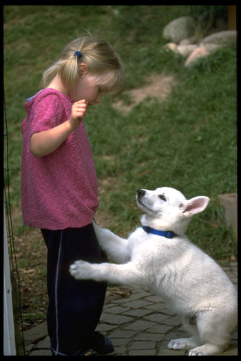 Alertness Animal Themes Curiosity Dog Domestic Animals Face-to-face One Animal Pets Capture The Moment Carefree