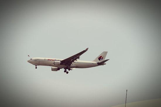 Plane Boeing 737 Florya Akvaryum Florya