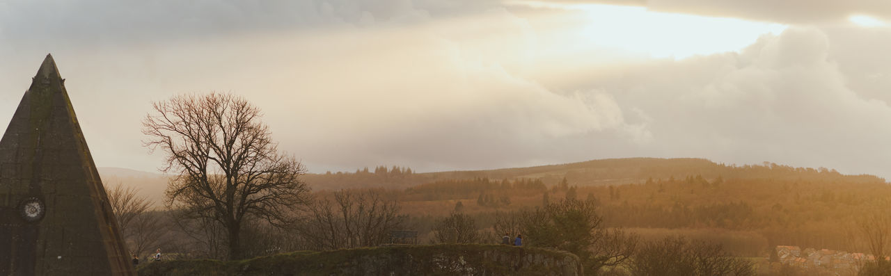 Panoramic shot of bare trees on landscape against sky