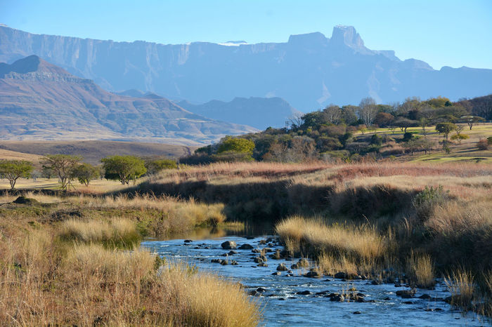 Drakensberge... in South Africa African Drakensberg, South Africa South Africa Africa African Beauty African Safari Beauty In Nature Blue Sky Day Drakensberg Dry Grass First Eyeem Photo Grass Landscape Mountain Mountain Range Mountains And Sky Nature Nature_collection No People Outdoors River South Africa 🇿🇦 Tranquil Scene Water And Mountains