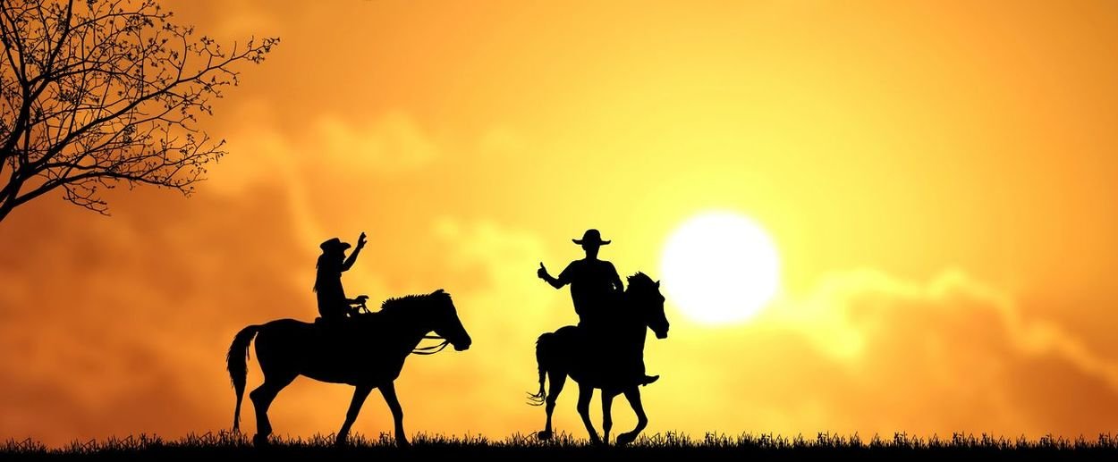 Silhouette two cowboys on horseback with blurred colorful sunset sky background in evening time, panoramic view Hat Lifestyle Blurred Background Shadow Environment Nature Outdoor Sunset Sunrise Evening Hand Up Sun Clouds Colorful Yellow Cowboy S Panorama Panoramic View Tree Silhouette Men Rural Scene Togetherness Riding Sunlight Sky Horse Shining Relaxing Moments Horseback Riding