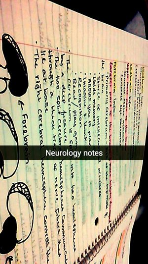 Neurology studying!!-.- Studying Neuropsych Neurosurgery Doctor  Soon To Be Doctor