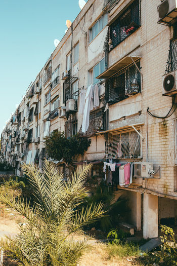 Poor districts of Tel Aviv Built Structure Architecture Building Exterior Plant Building Residential District Tree Nature Day Window No People Growth Outdoors City Sky Low Angle View House Palm Tree Potted Plant Laundry Apartment