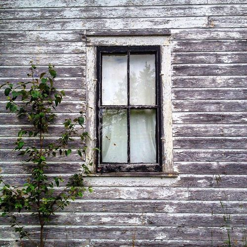 Family Farm Upper Peninsula Love Weatheredwood Window Pane Old House Memories Longing Country Life Simple Reflections Yesteryear