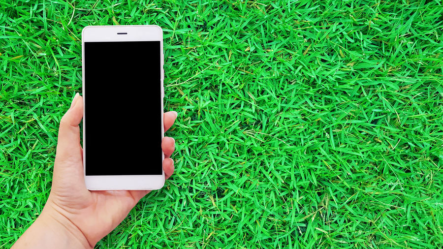 Mockup image of hands holding white mobile phone in green grass background Grass Green Hands Image Poster Advertisement Backgrounds Banner Blank Communication Cover Flyer Green Color Holding Human Hand Mobile Mobile Phone Mockup Phone Screen Smart Phone Technology Web White Wireless Technology