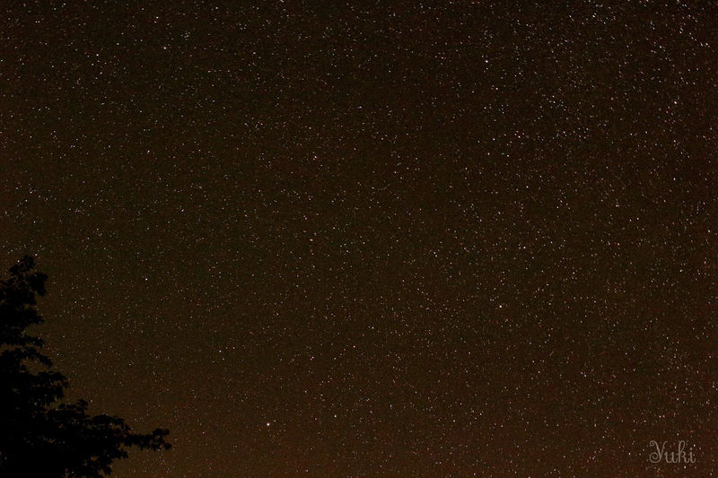 Low angle view of starry sky