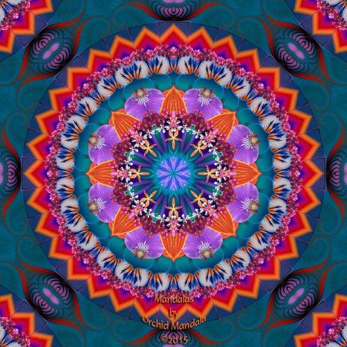""" Evening Focus 2.20.15"" Daily Mandala Sacredgeometry Spirituality Mandala Painting Mandala Art Zendala Kaleidoscope Eye Candy Kaleidoscope Dream Mandala"