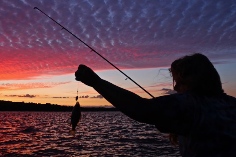 Night Capture Sunset Sky Water Real People Fishing One Person Silhouette Holding Beauty In Nature Nature Activity Scenics - Nature Fishing Rod Orange Color Leisure Activity Rod Fisherman Cloud - Sky Lifestyles